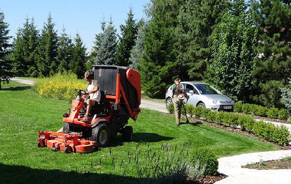 Entretien de jardin dans le doubs secteur besan on for Prix entretien jardin