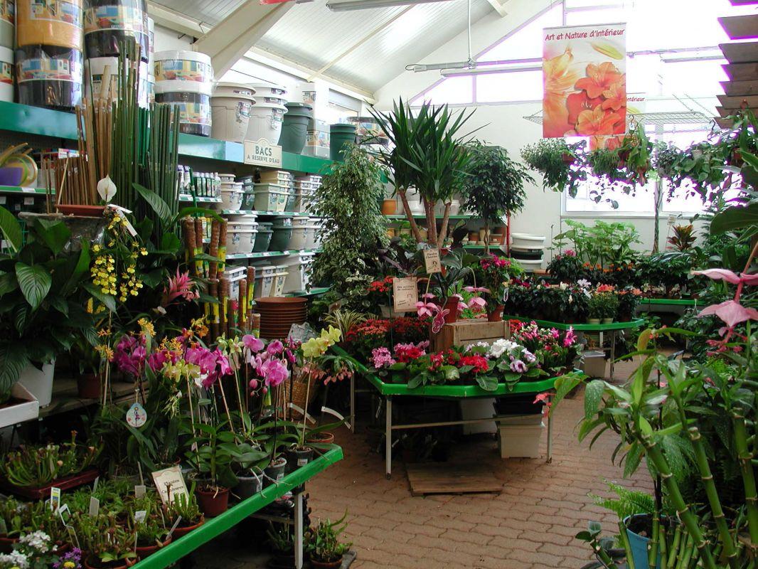 Jardiland pontarlier duchesne jardins for Plantes jardinerie
