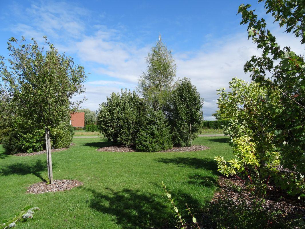 Plantation et pelouse dans le doubs duchesne jardins for Jardin plantation