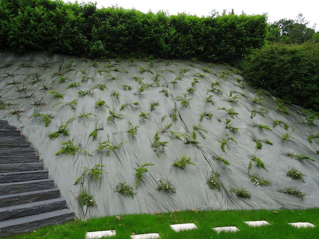 Planter un gazon excellent cliquez with planter un gazon best gazon sem et plantations - Quand planter de la pelouse ...