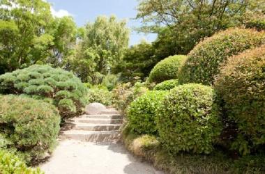 Entretien de jardin duchesne jardins for Entretien jardin 95